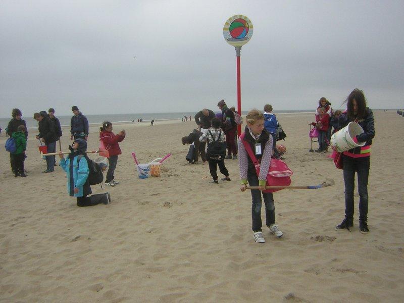 h19-stranddag-2013-047