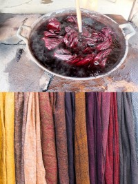 dyeing cotton with natural materials in Thailand